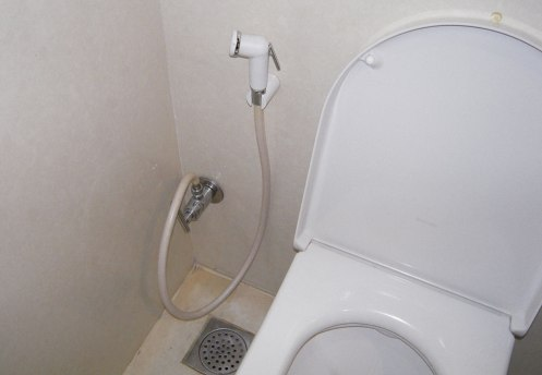 Toilet-and-Hose